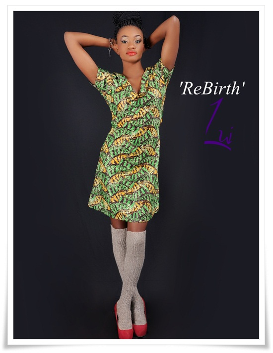 https://kimberlyakinola.files.wordpress.com/2013/04/liu-rebirth.jpeg